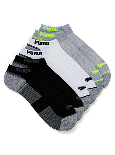 Grey terry ped sock 6-pack