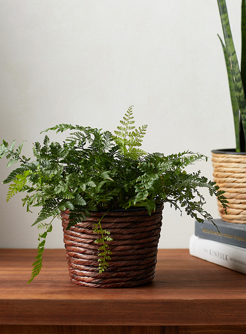 Small twisted brown seagrass planter