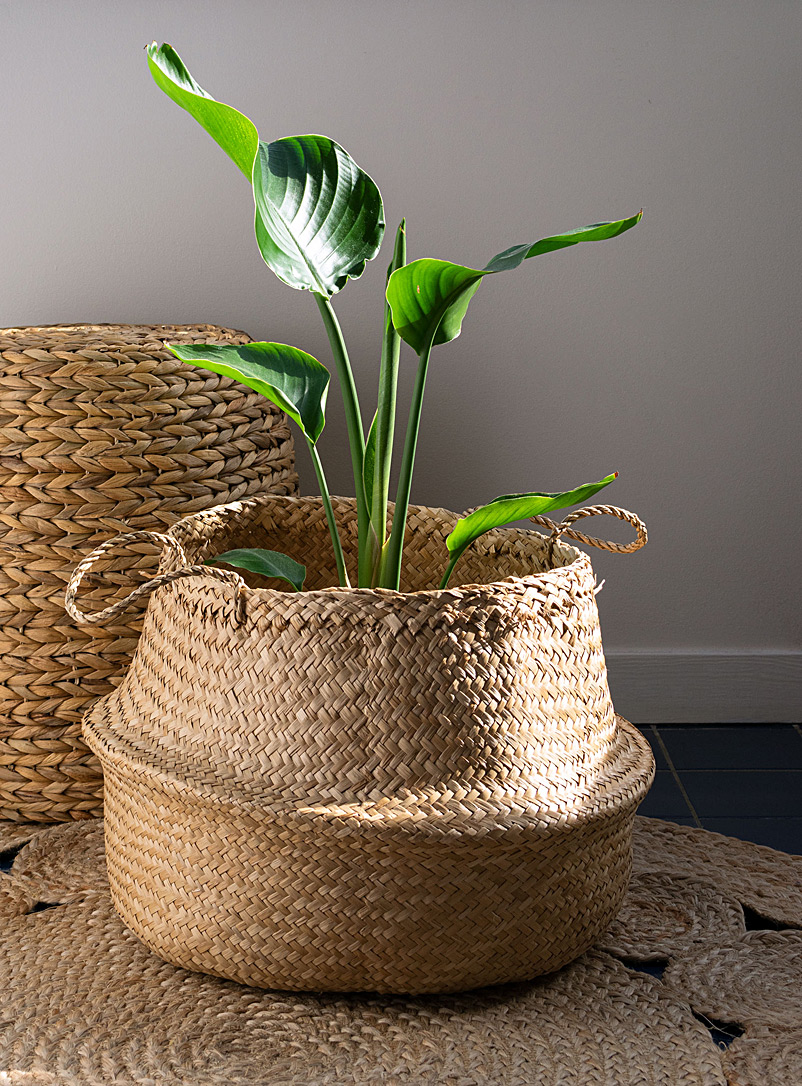Simons Maison Assorted Natural seagrass basket