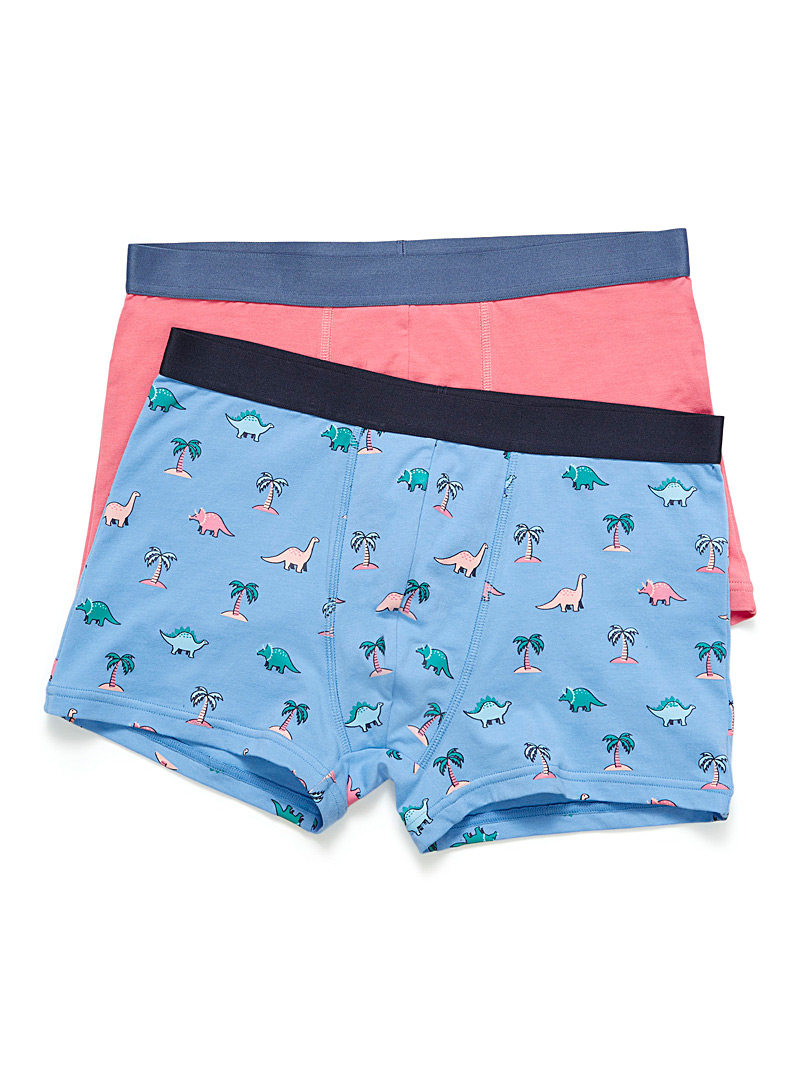Le 31 Baby Blue Expressive organic cotton trunk  2-pack for men