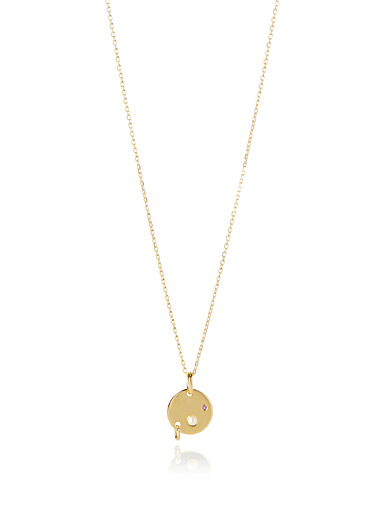 Le collier ajustable Faraday