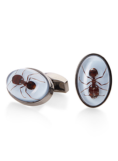 Ant oval cufflinks