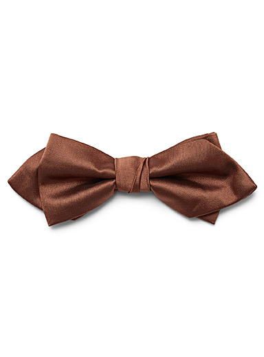 Satiny colour bow tie