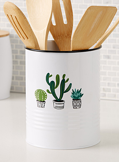 Cactus and succulent canister