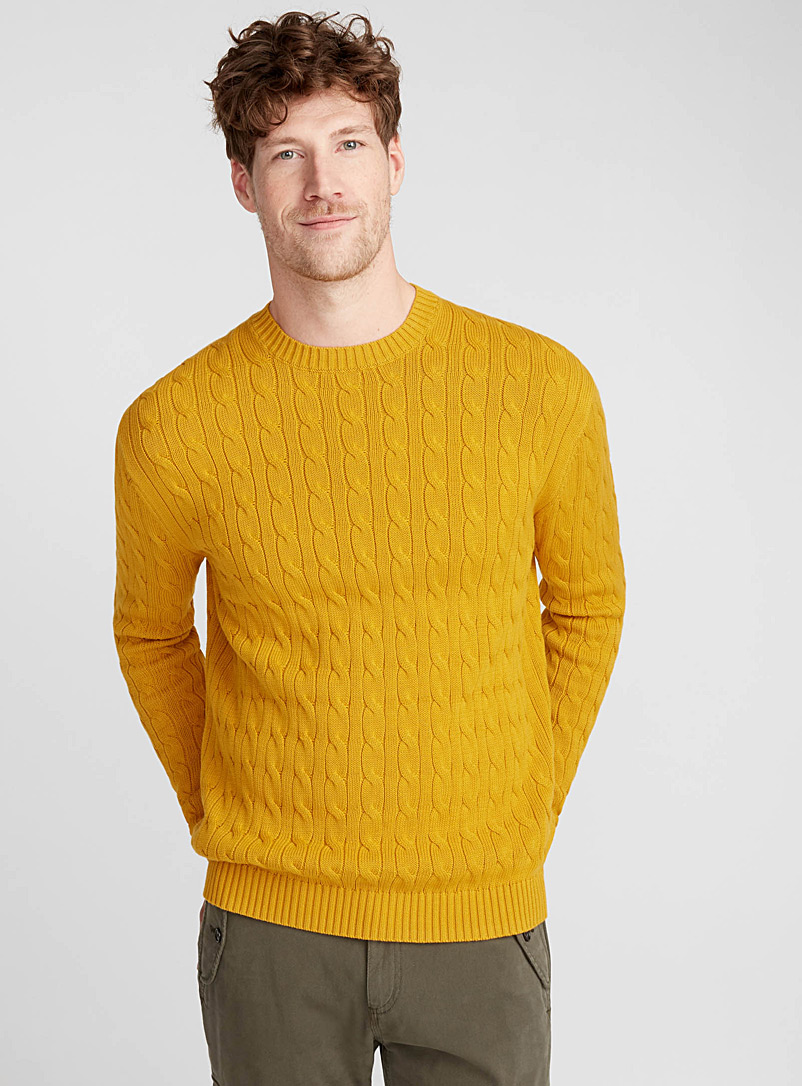 Twisted cable-knit organic cotton sweater - Cotton - Golden Yellow
