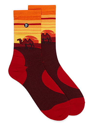 Hump the Bump socks