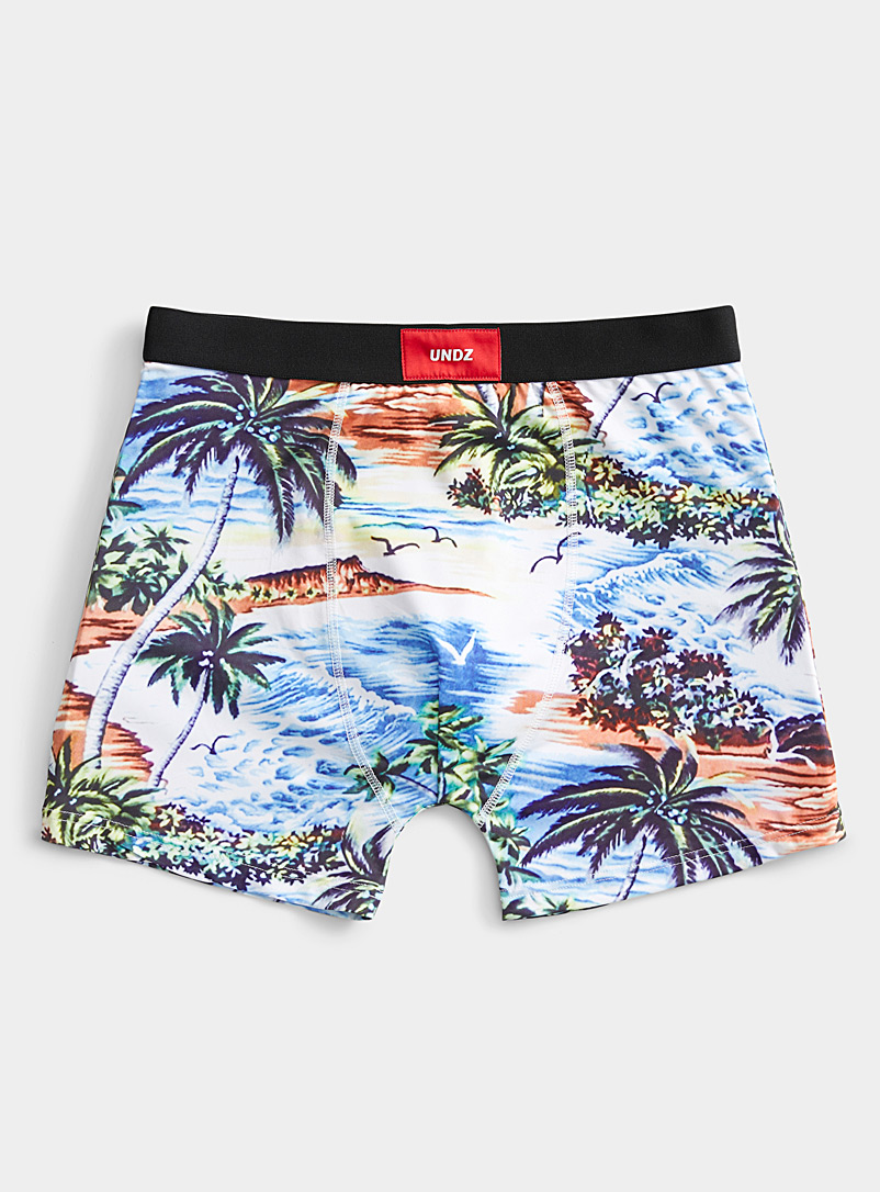 Undz Patterned Blue Retro tropics boxer brief for men