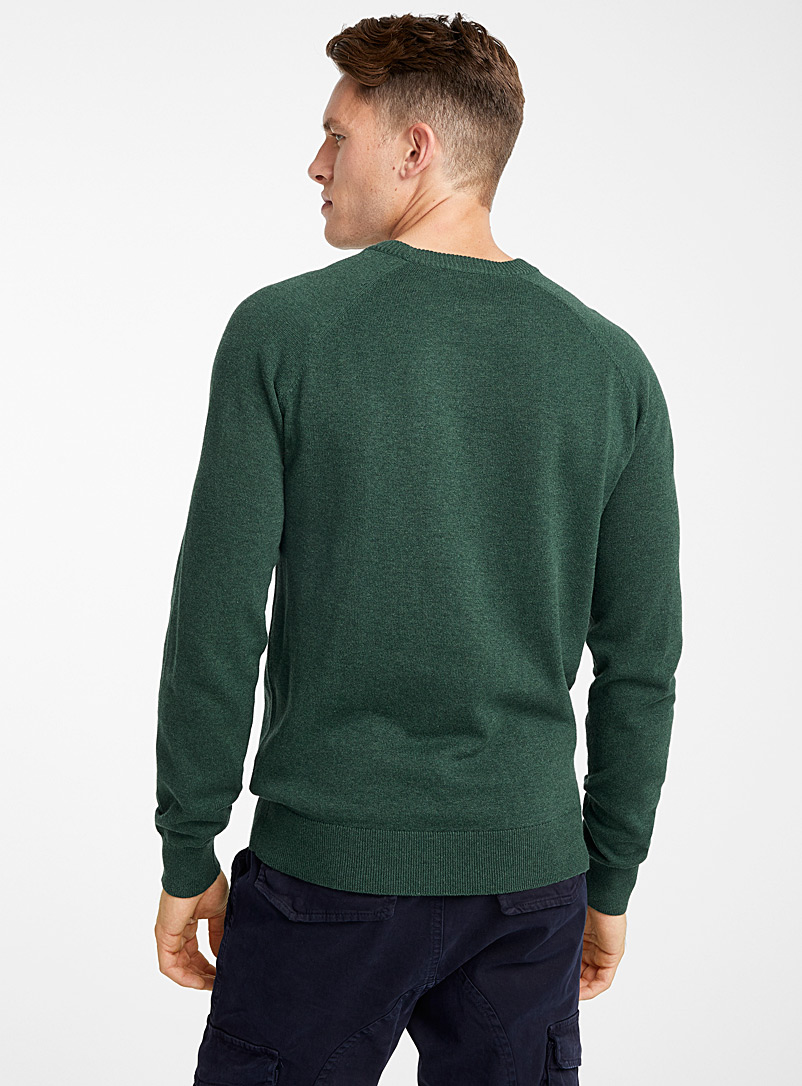 Basic crew-neck sweater - Cotton - Mossy Green