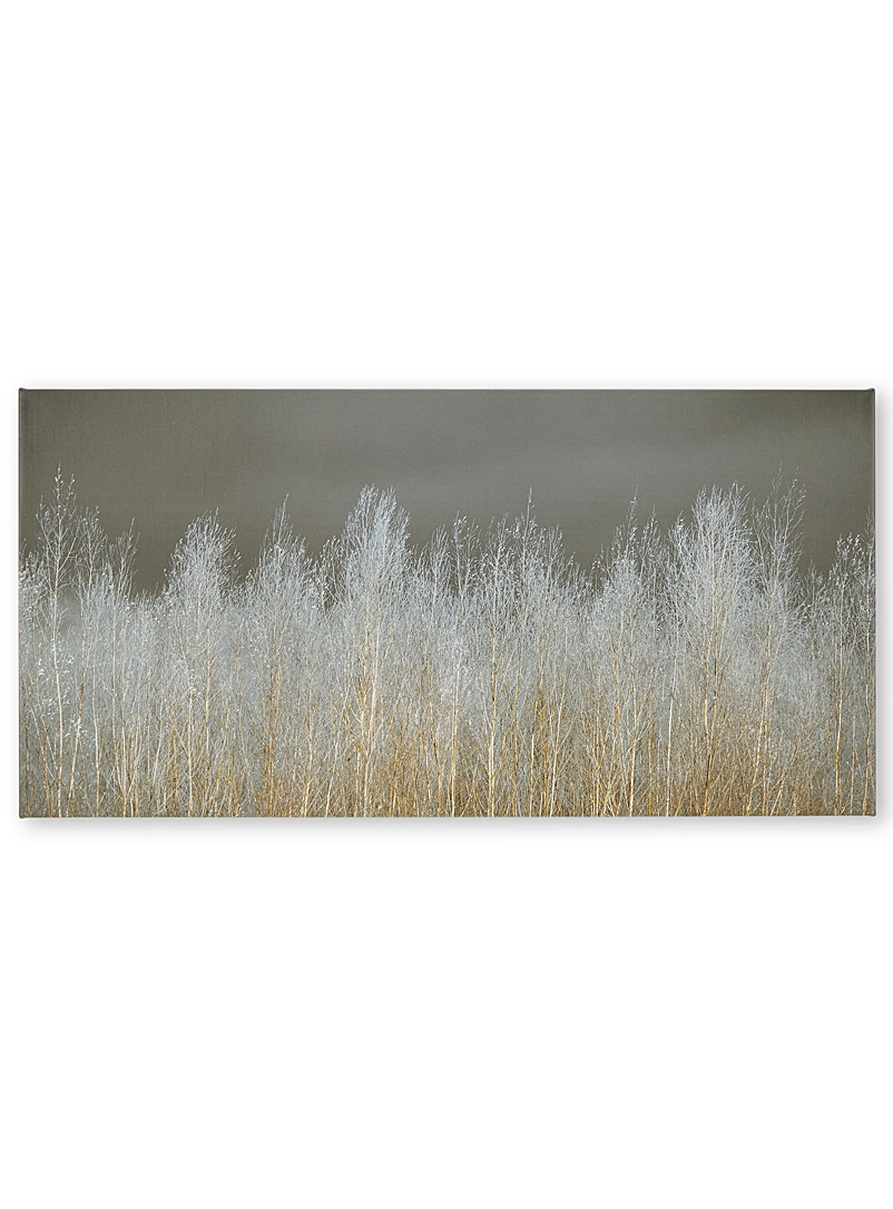 silver-forest-canvas-print-br-3-sizes-available