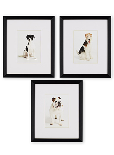 Company dogs 3-piece art print set <br>10.5