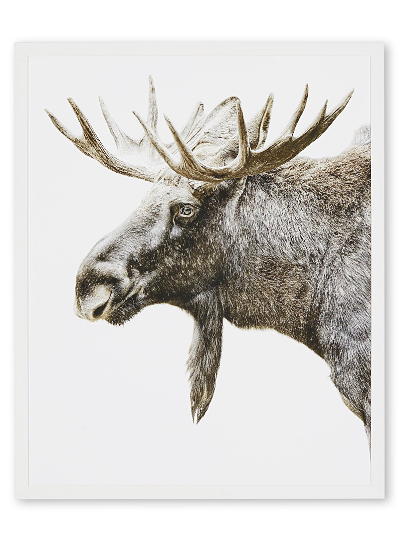moose-art-print-br-2-sizes-available