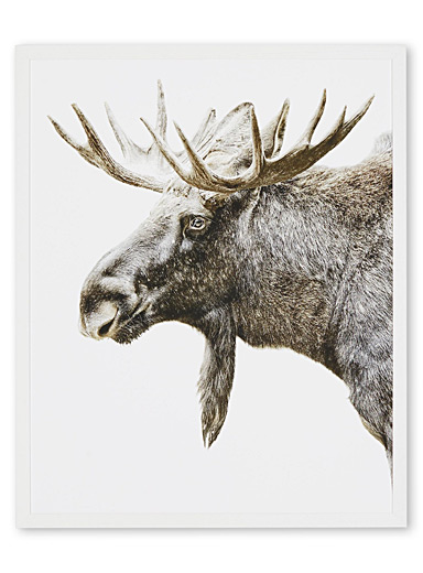 Moose art print <br>2 sizes available