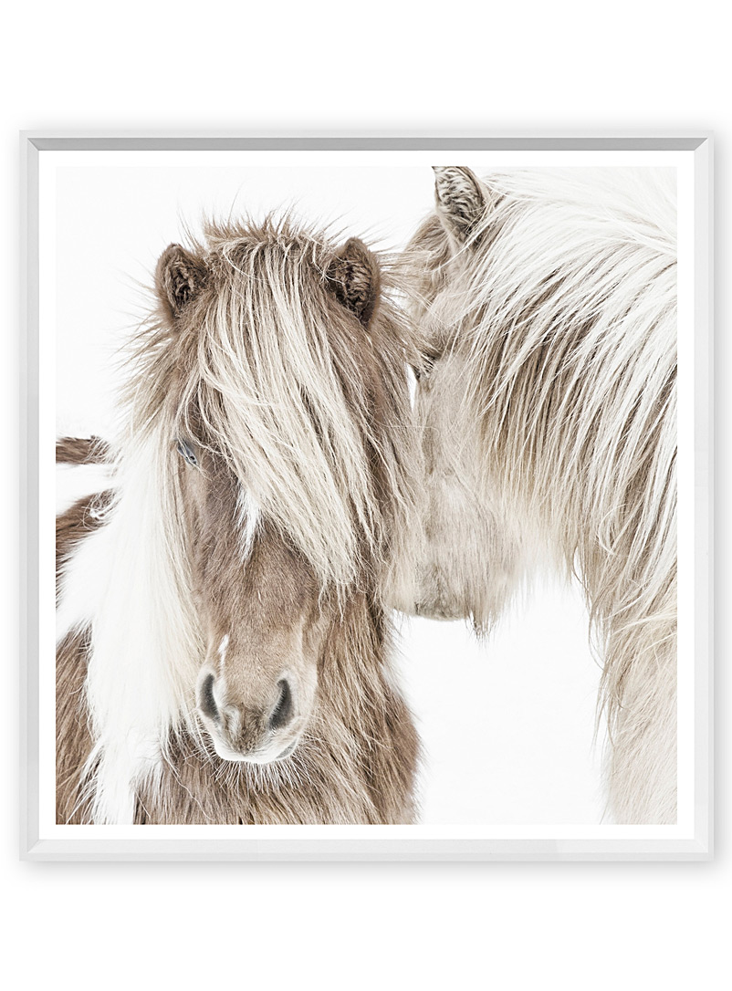 Small Icelandic pony art print  20&quote; x 21&quote; - Art - White