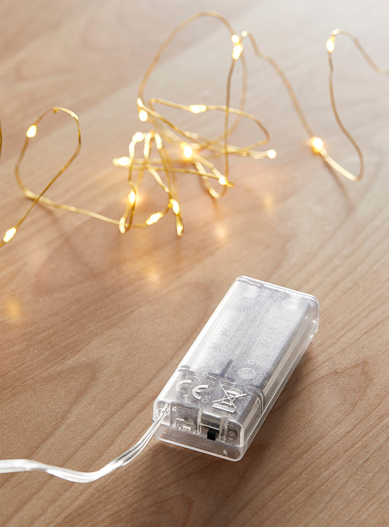 Simons Maison Assorted 36-LED string lights