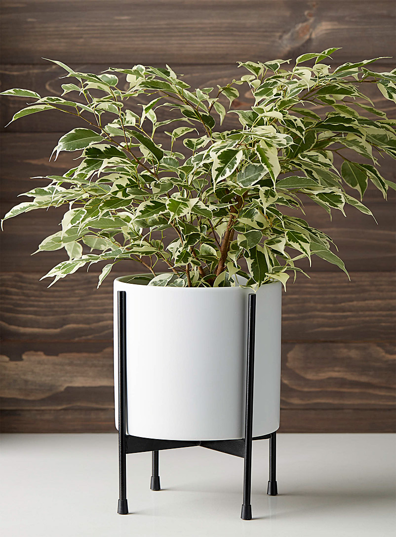 Modern standing planter - Decorative Pots & Planters - White
