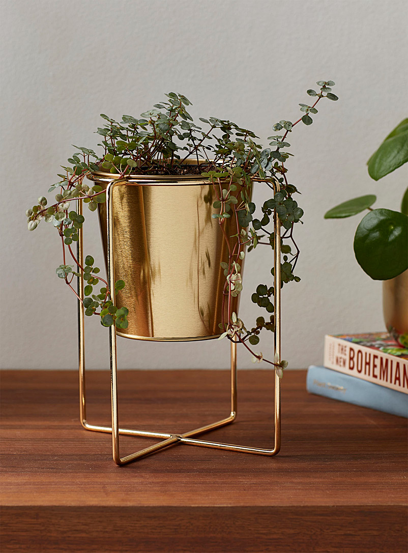 Entirely gold planter with a holder