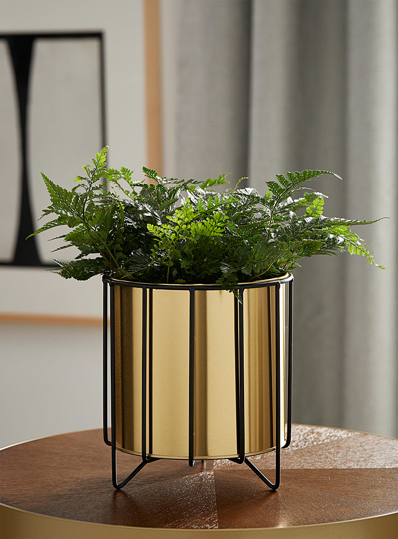 Gold planter with a matte black holder