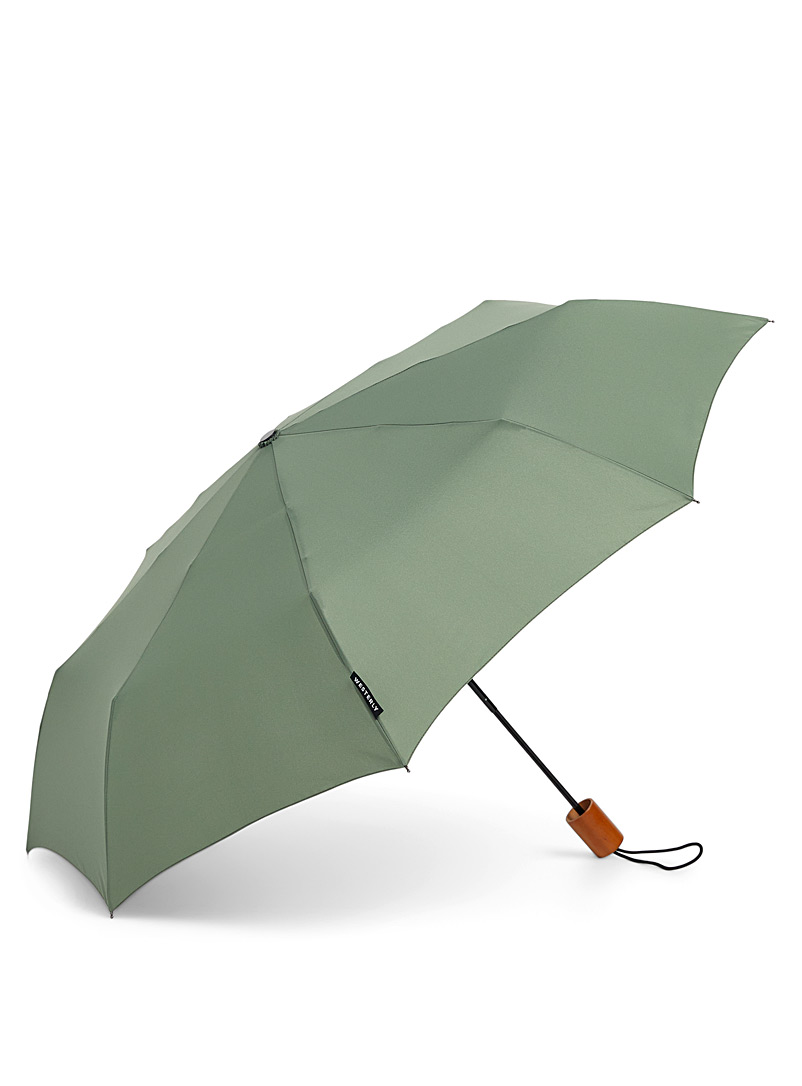 Wood handle solid umbrella - Umbrellas - Charcoal