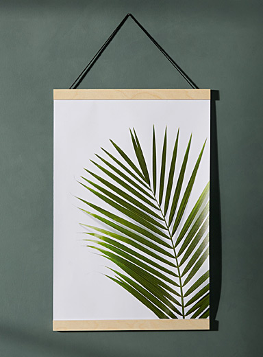 Kentia poster  15&quote; x 21&quote;