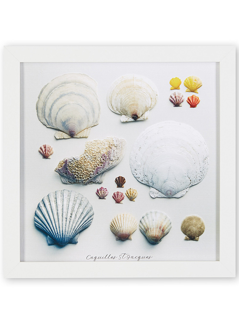 Scallop shell art print  10&quote; x 10&quote; - Graphic - White