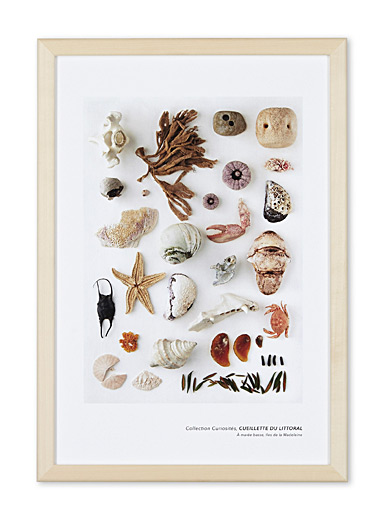 Coastal harvest art print