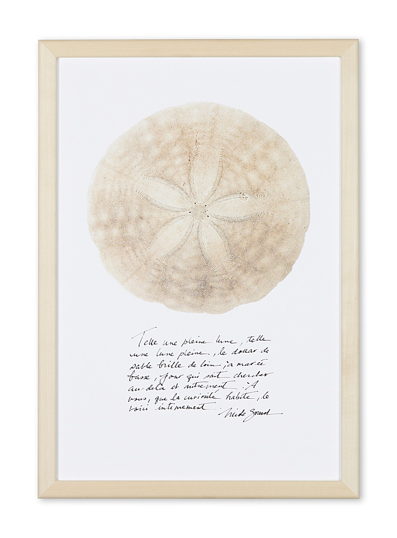 À marée basse Assorted Sand dollar art print