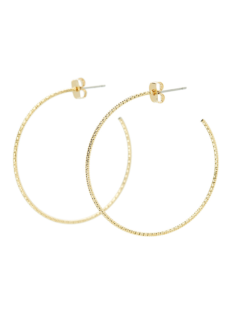 Shimmery hoops - Earrings - Assorted