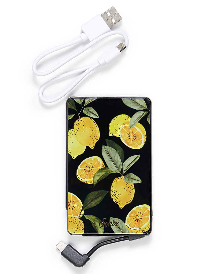 citrus-iphone-charger