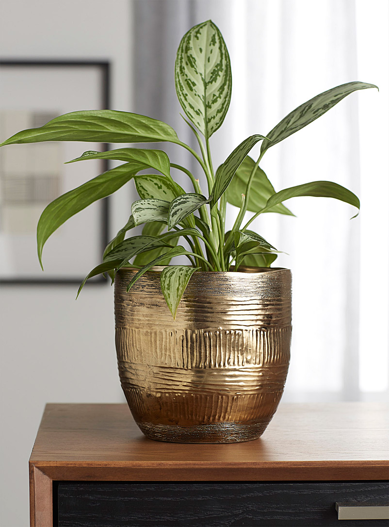 Simons Maison Assorted World traditions planter