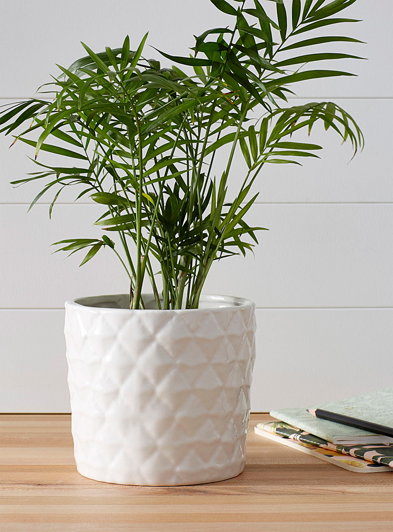 Simons Maison Warm White Decorative pineapple planter