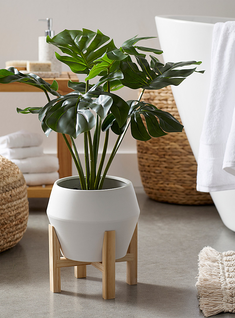 Monstera imitation green plant