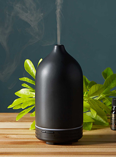 Le diffuseur ultrasonique