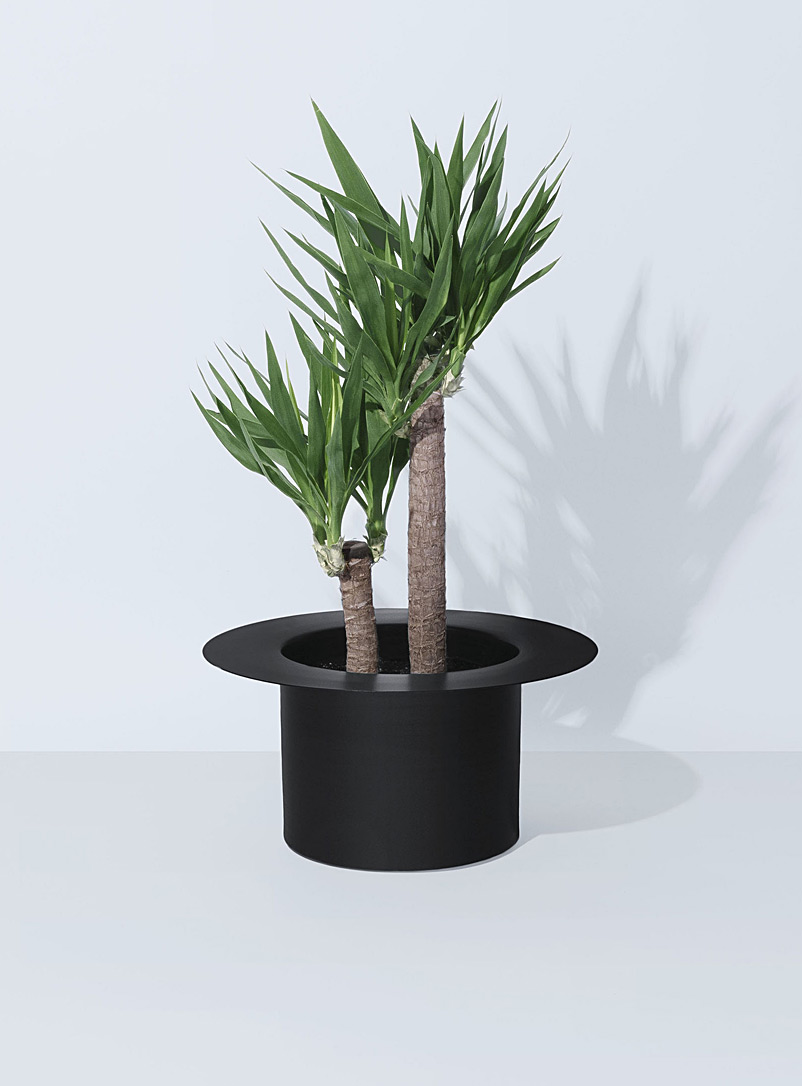 Allstudio Black Nymphea 10 planter