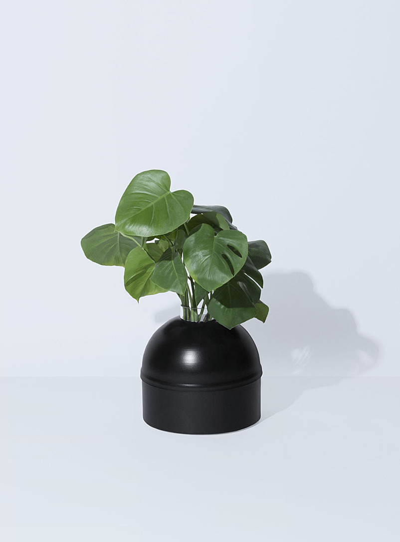 Allstudio Black Orthensia 5 planter