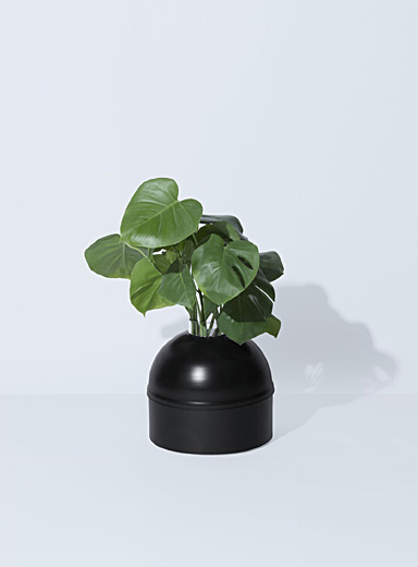Orthensia 5 planter