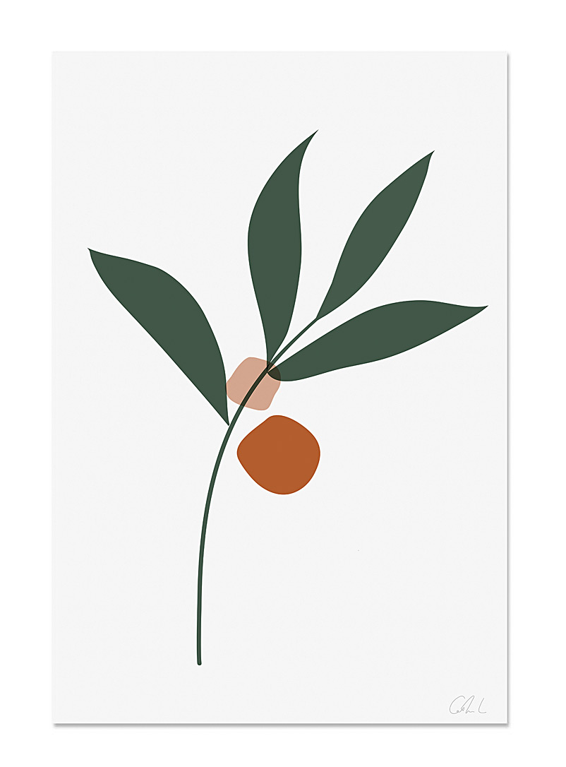 Catherine Lavoie Assorted Botanical art print  2 sizes available