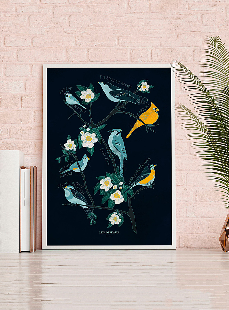 Birds of Canada art print