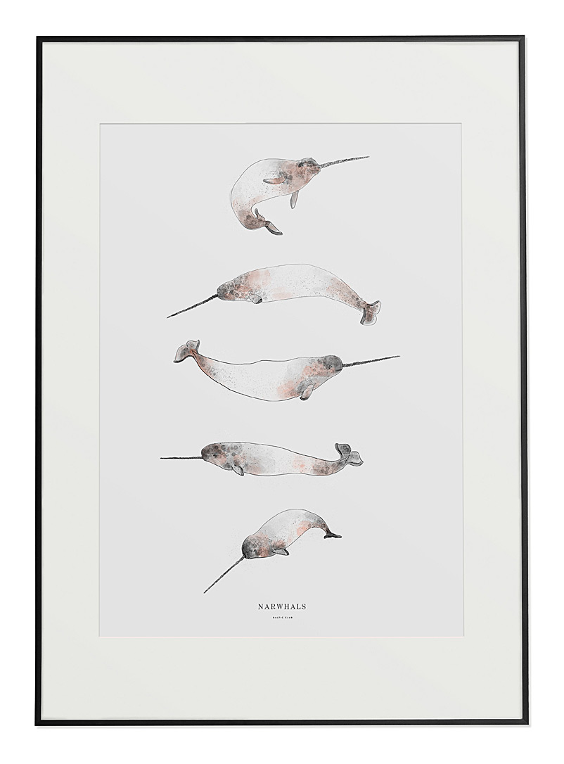 Narwhals poster  2 sizes available - Baltic Club - Grey