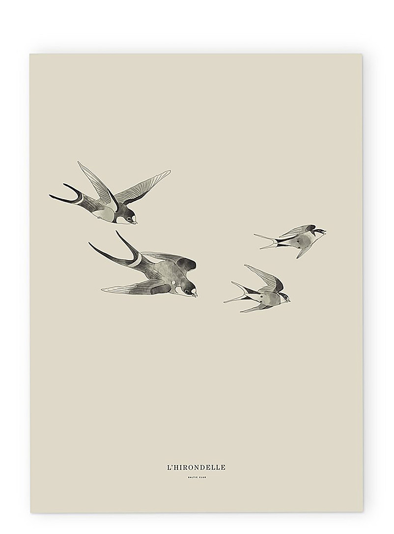 Swallow poster  2 sizes available - Baltic Club - White