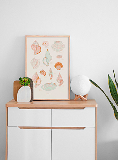 Seashells art print  2 sizes available