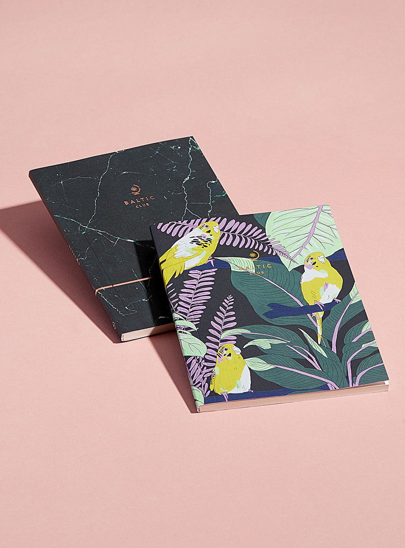 set-of-parakeet-and-marble-notebooks