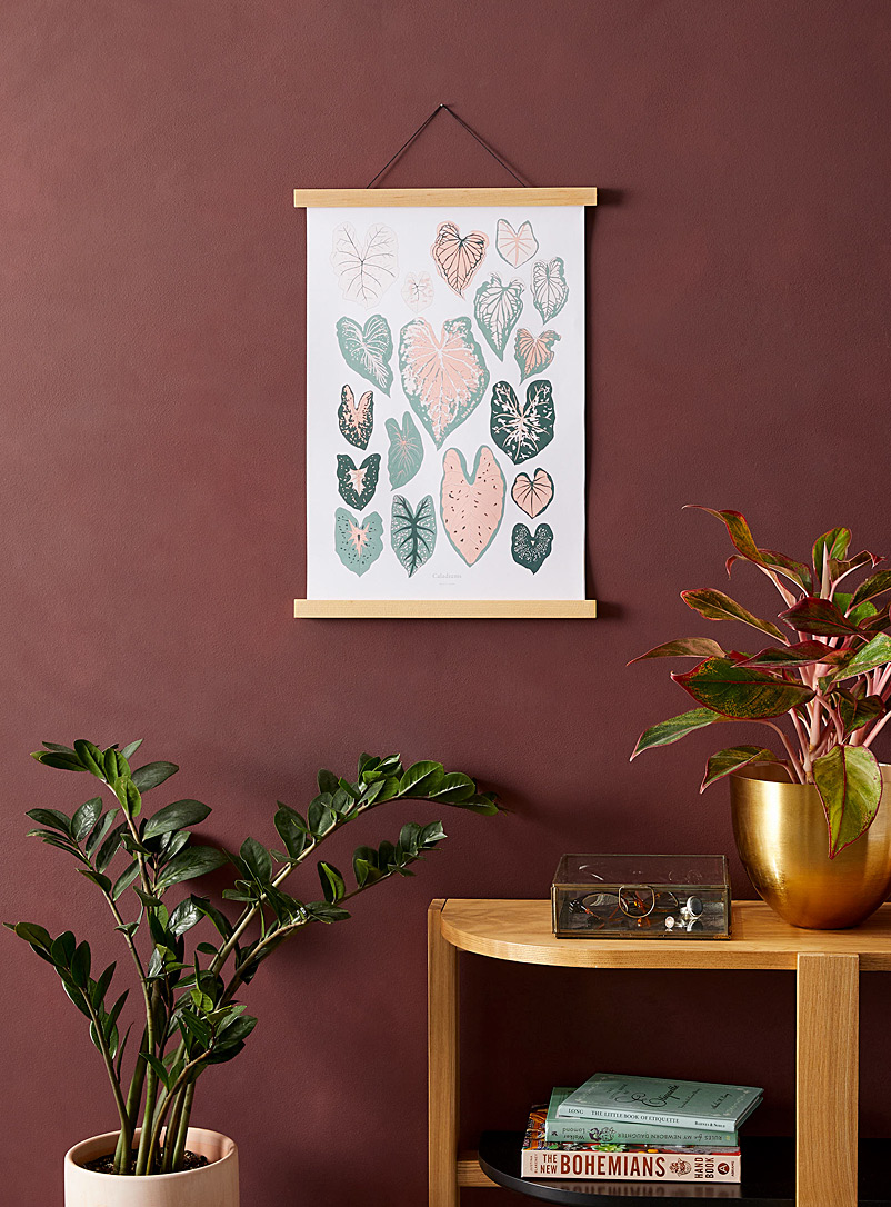 Baltic Club: L'affiche Caladiums  2 formats offerts Rose