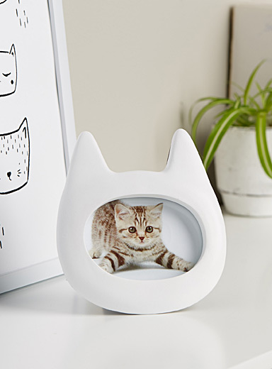 White cat picture frame