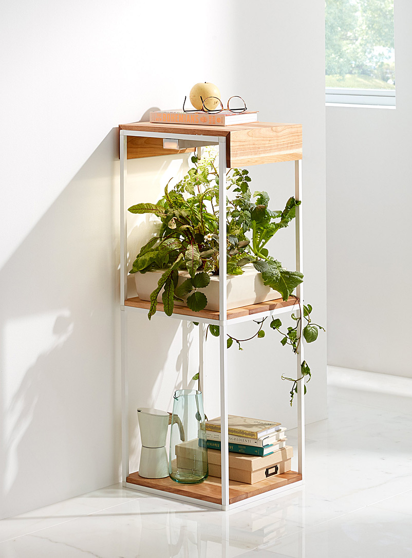 mini-hydroponic-cultivation-shelf