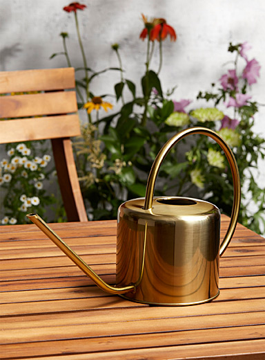 Vintage metallic watering can