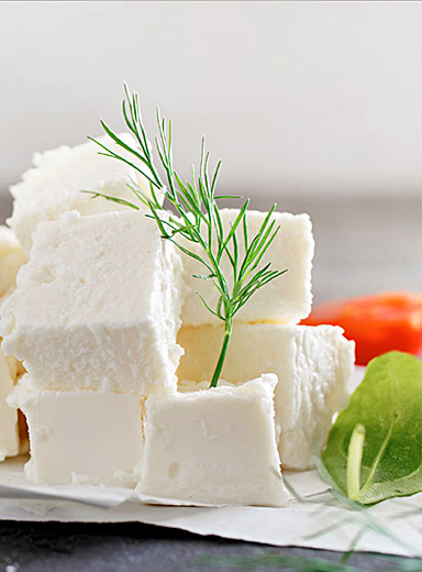 Feta and Greek yogurt making kit
