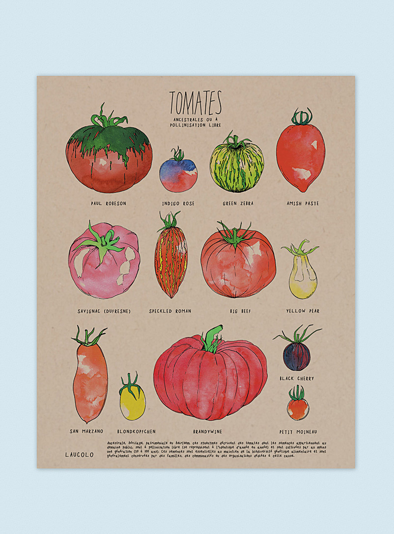 Heirloom tomatoes poster - Laucolo - Kraft - French