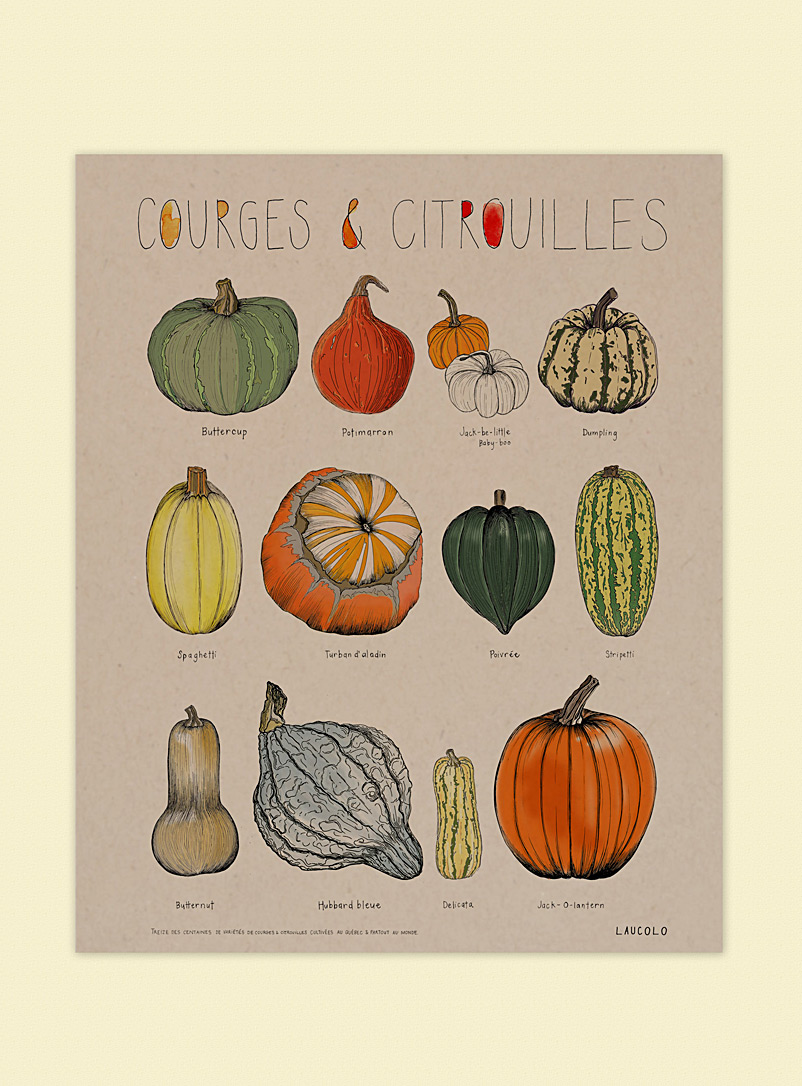 Laucolo White - English Squashes & pumpkins art print