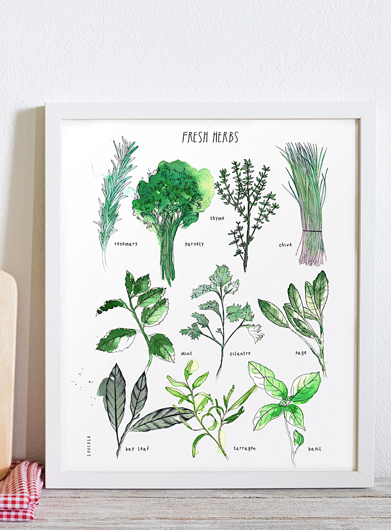 Laucolo Kraft - French Fresh Herbs art print