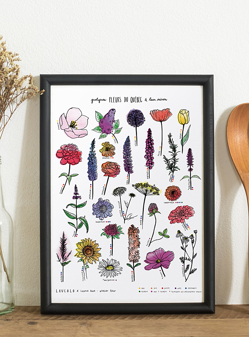 Quebec Flowers poster - Laucolo - White